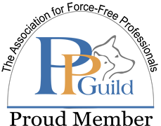 PPguild